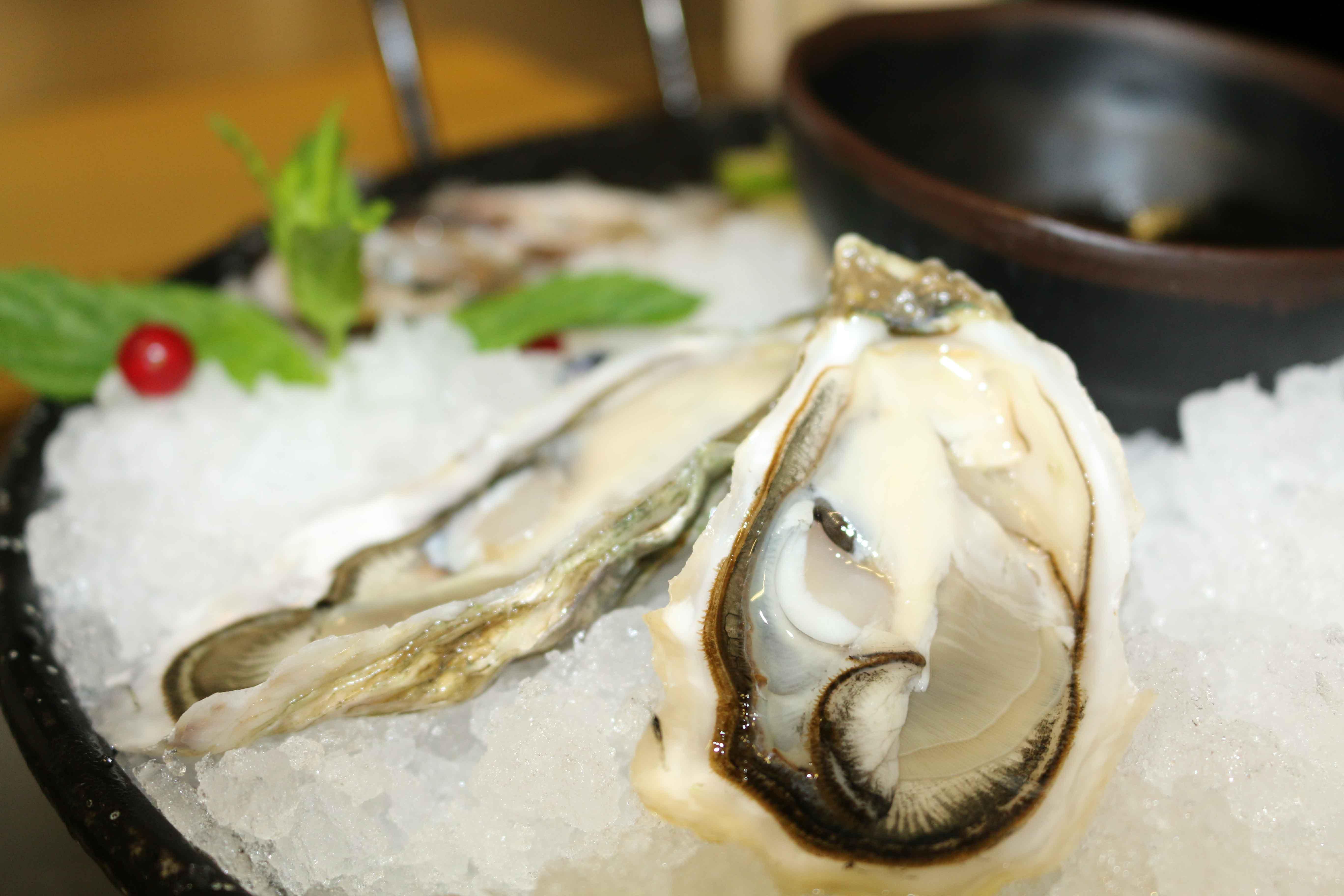 Ostriche ristorante Vecio Piave